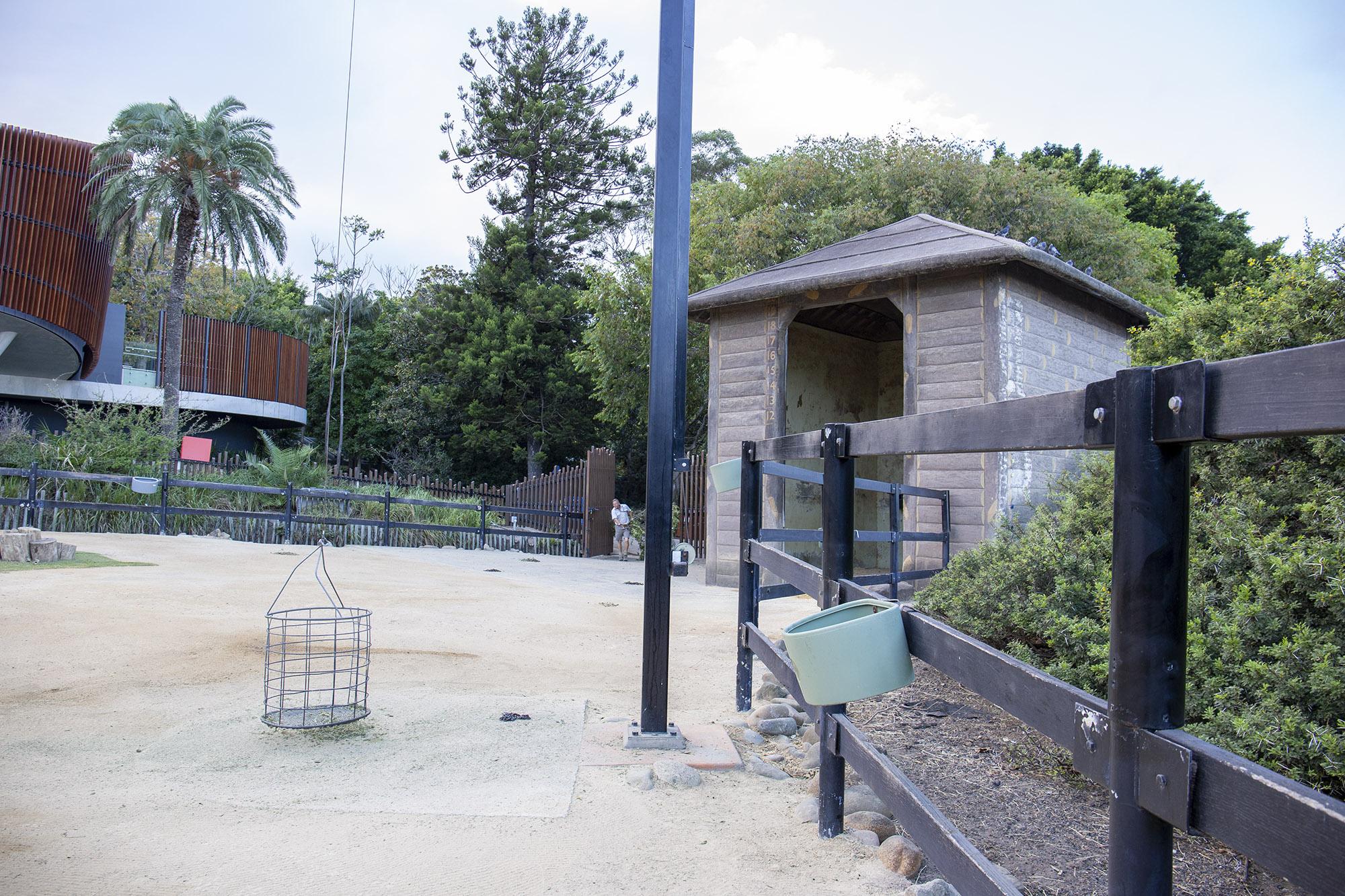 Taronga Zoo, Giraffe Enclosure